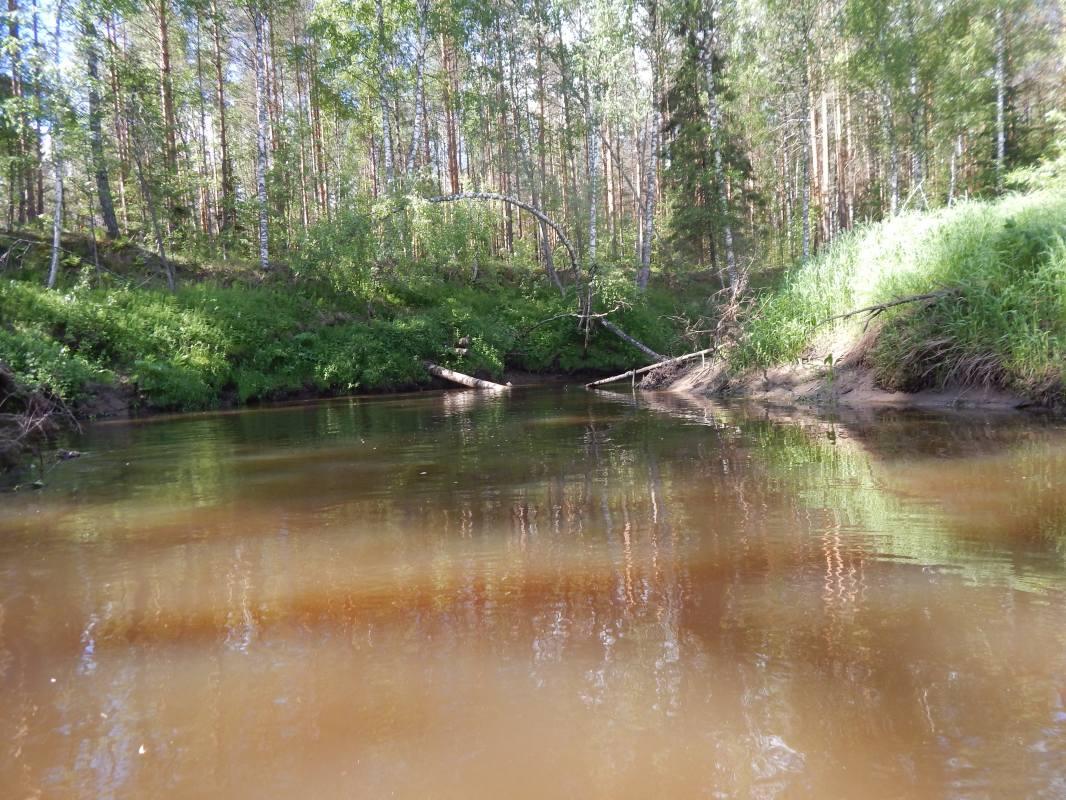 рыбалка на реке андоба
